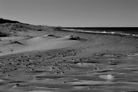 Sandy Shore b&w